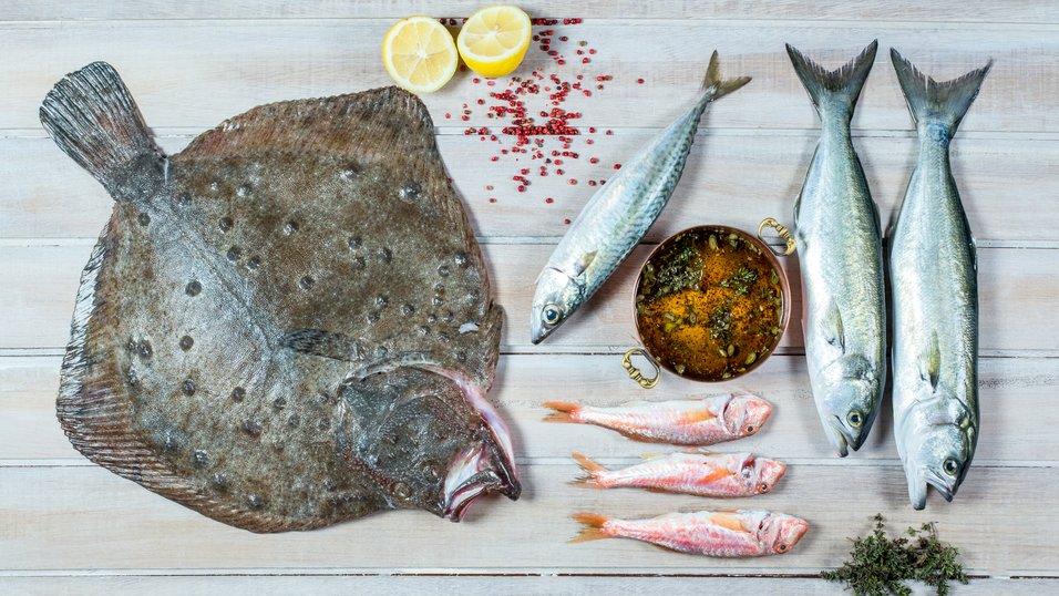 Fisk og skalldyr kurs Bølgen & Moi
